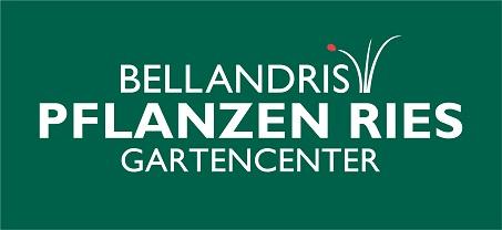 Pflanzen-Ries Dg 20140328